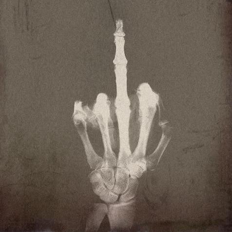 Doigt D Honneur Photo hier j'ai fait un doigt d'honneur à quelqu'un. | la déesse joyeuse